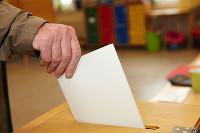 Веб-камеры для выборов