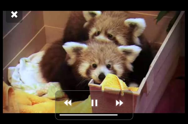 Mozilla продемонстрировала новый интерфейс Open Web Devices (OWD)