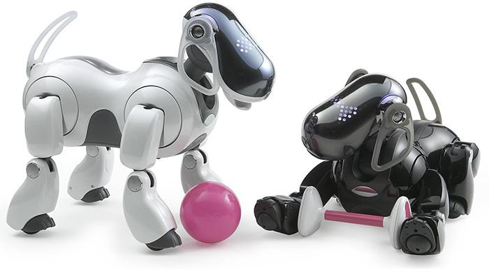 Sony создаст роботов для общения