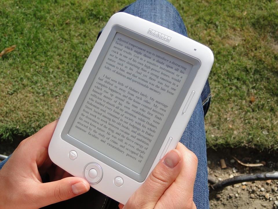 ЛитРес выпустит fb3 — новый формат электронных книг