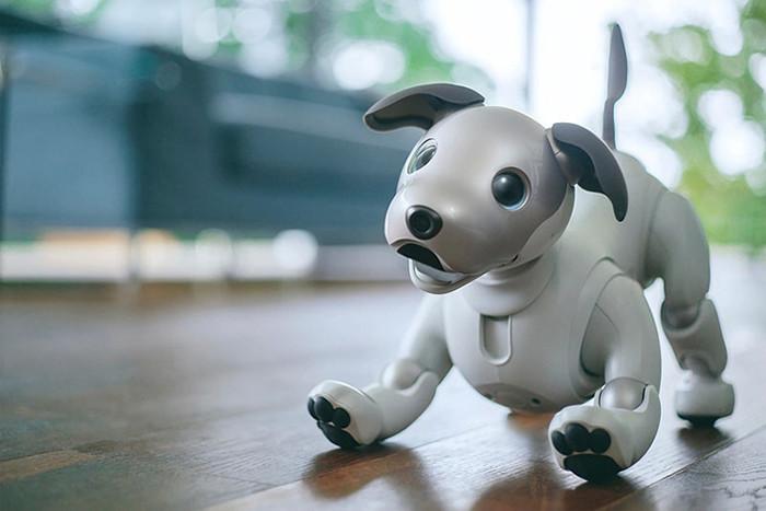 События недели: релиз iPhone X, возвращение робособаки Sony Aibo и геймерский Razer Phone