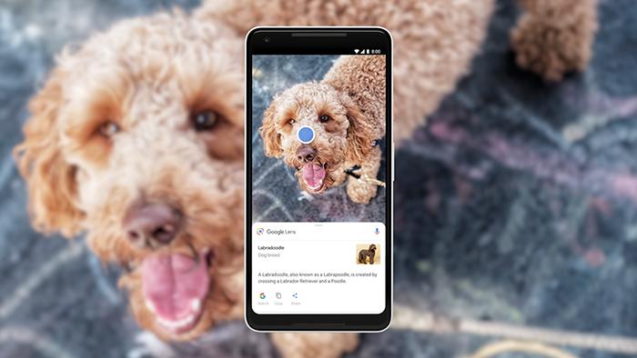 Google I/O 2018: искусственный интеллект везде и всюду, звонки без участия человека и копирование текста с реальных объектов