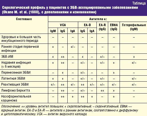 Анализ крови ebv ebna igg медицинская справка в питере