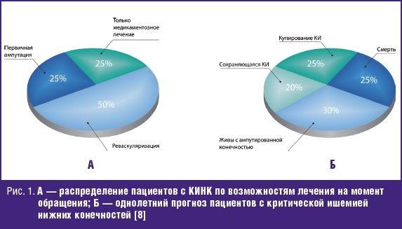 А — распределение пациентов с КИНК по возможностям лечения на момент обращения; Б — однолетний прогноз пациентов с критической ишемией нижних конечностей
