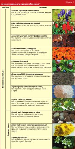 Активные компоненты препарата Гомеовокс