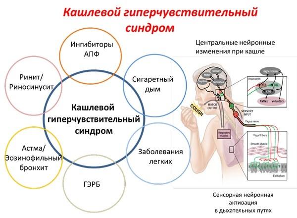 Возможные причины и патофизиологические механизмы ГЧКС