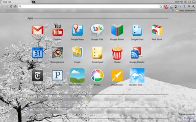 главная страница Google Chrome - фото 7