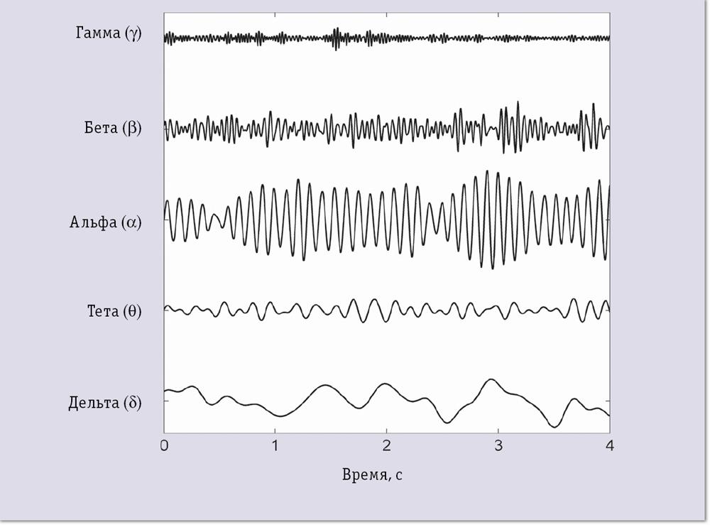 Примеры сигналов ЭЭГ