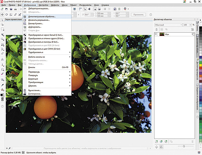 Как вставить картинку в фигуру в кореле. 11. Вставляем картинку в CorelDRAW.