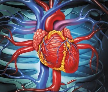 Фармакотерапия артериальной гипертензии у пожилых больных