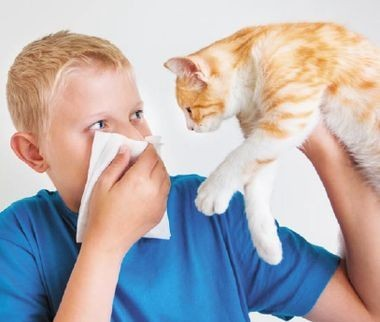 Консенсус (ПРИМА). Педиатрические рекомендации по иммуномодулирующим препаратам в амбулаторной практике