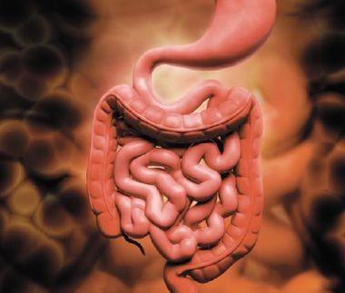 Особенности курации больных пожилого и старческого возраста с гастроэзофагеальной рефлюксной болезнью