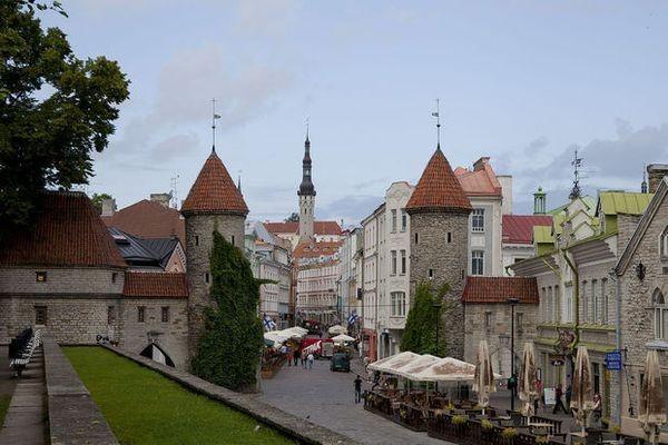Страна как сервис: новая модель Эстонии