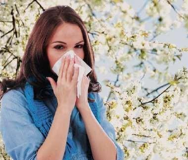 Возможности проведения аллерген-специфической иммунотерапии у полисенсибилизированных пациентов