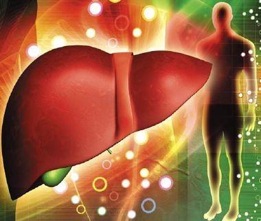 Билиарный статус у пациентов с хроническими гепатитами В и С