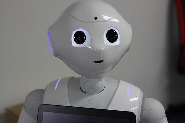 Закон для искусственного разума: В Российской Федерации хотят урегулировать отношения человека иробота
