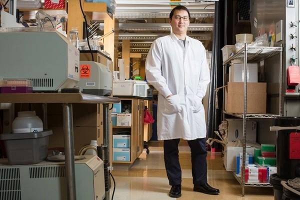 Перепрограммирование биологических систем поможет бороться с раком