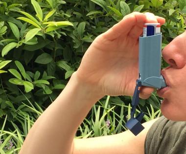 Триггерные факторы формирования коморбидной аллергической бронхиальной астмы