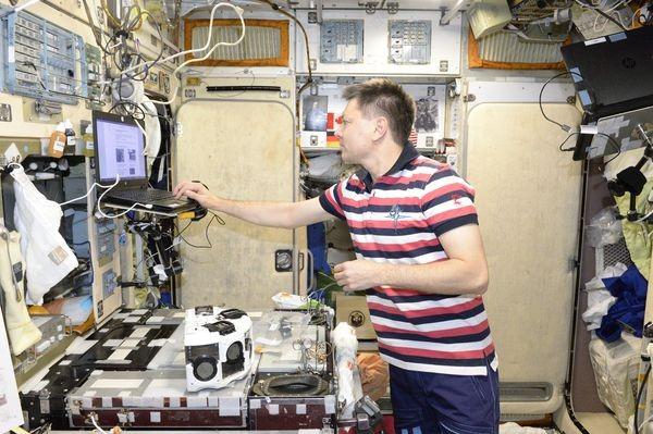 В Космосе впервые напечатаны живые ткани на 3D-биопринтере