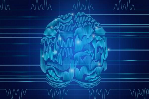 Анализ гибкости мозга поможет преодолеть «забывчивость» искусственного интеллекта
