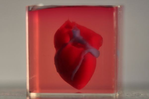 Из биоматериалов пациента напечатали сердце на 3D-принтере