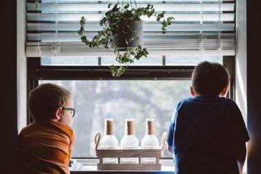 Роль цитокинов и факторов роста в формировании и прогрессировании хронической болезни почек у детей