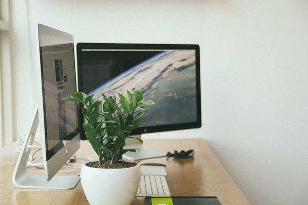 IBM: на «Маках» сотрудники работают эффективнее и больше удовлетворены работой