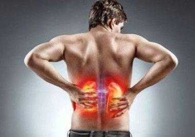Микробиота кишечника и воспаление при хронической болезни почек