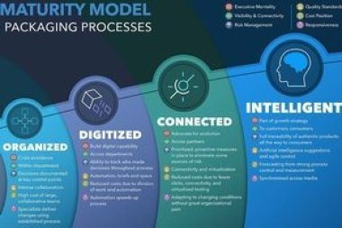 Esko выпустила программное решение для оценки уровня цифровой трансформации печати упаковки