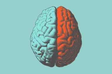 Ступенчатое включение: дозозависимый эффект антидепрессантов