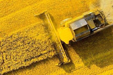 Урожай-2020 в России впервые собрали умные комбайны
