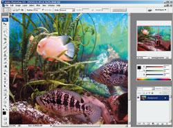 Рис. 1. Интерфейс Photoshop CS3