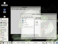 Moblin 2.0 — усеченный вариант Linux, оптимизированный для небольших экранов нетбуков и мобильных Internet-устройств, отличающийся простотой пользовательского интерфейса и улучшенными функциями энергосбережения
