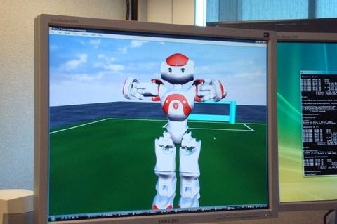 Программисты могут работать с программным обеспечением, созданным компанией Aldebaran Robotics, моделируя различные процессы на базе робота Nao. Этот робот был создан для участия в турнире роботов RoboCup - состязании роботов-гуманоидов в игре, похожей на футбол. Задача группы – создать команду роботов, которая могла бы обыграть команду людей к 2050 году.
