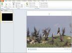 Теперь можно выполнять базовое редактирование изображений внутри большинства приложений Office, а PowerPoint даже позволяет редактировать и форматировать видео непосредственно внутри слайд-шоу