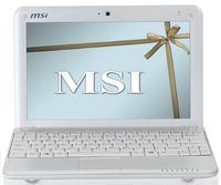 Первая модель всерии мини-ноутбуков Wind, получившая индекс U100, имеет 10-дюймовый ЖК-экран со светодиодной подсветкой