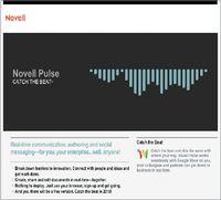 Программный инструментарий Novell Pulse относится к новой волне корпоративных инструментов совместной работы, которые позволяют использовать возможности популярных социальных сетей «потребительского класса», таких как Facebook и Twitter, в профессиональной деятельности, дополняя их функциями обеспечения безопасности и управления, которые требуются организациям