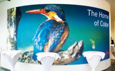 Символом форума стал зимородок — маленькая (всего 40 г), но очень красочная птица. Её популяция сейчас, благодаря усилиям природоохранных организаций, постепенно увеличивается. Обитает птичка по берегам водоёмов, ловко ныряя за добычей в воду, поэтому по-английски называется Kingfisher — королевский рыболов. А ещё есть поверье: встретите зимородка — и он исполнит Ваше желание…
