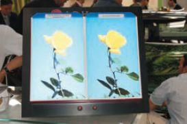 На стенде LG выявлялись достоинства светорассеивающей плёнки Vizuon Diff (слева) со светостойкостью 5 лет