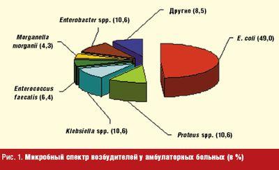 Рис. 1. Микробный спектр возбудителей у амбулаторных больных (в %)
