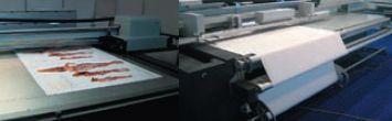Во время презентации шла печать на плоских (в т. ч. жёстких) и рулонных материалах