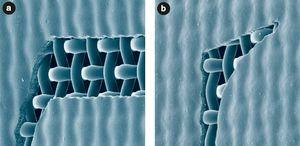 Рис. 10. Трафаретная форма, изготовленная при помощи фотоэмульсии двойного отверждения Saatichem на ткани Saatilene Hitech 120(305).34 PW. а) метод