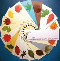Каталог образцов дизайнерских бумаг от поставщика