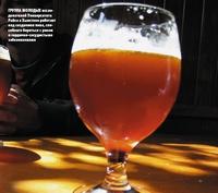 Группа молодых исследователей Университета Райса вХьюстоне работает над созданием пива, способного бороться сраком исердечно-сосу?дис?тыми заболеваниями