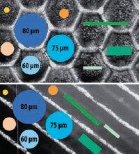 Частицы эффектного пигментированного лака должны полностью помещаться в структуры растрового валика. Пример валика от Zecher: 120 лин./см, соотношение перемычка/ячейка 1:10 (гексагональный) или 1:16 (