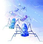 Внутри одного компьютерного корпуса может насчитываться несколько тысяч насекомых