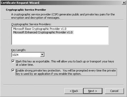 Рис. 5. Активизация дополнительной защиты частного ключа в мастере Certificate Request Wizard.