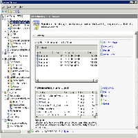 Рис.1 Консоль управления сервером. Управление ролями