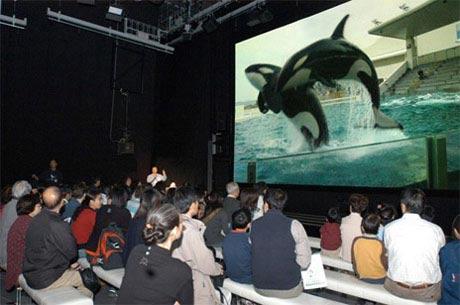 С 2005 года японская публика приобщается к цифровому телевидению сверхвысокой четкости UHDTV