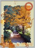 Рис. 7. Взглянем на осень по-новому